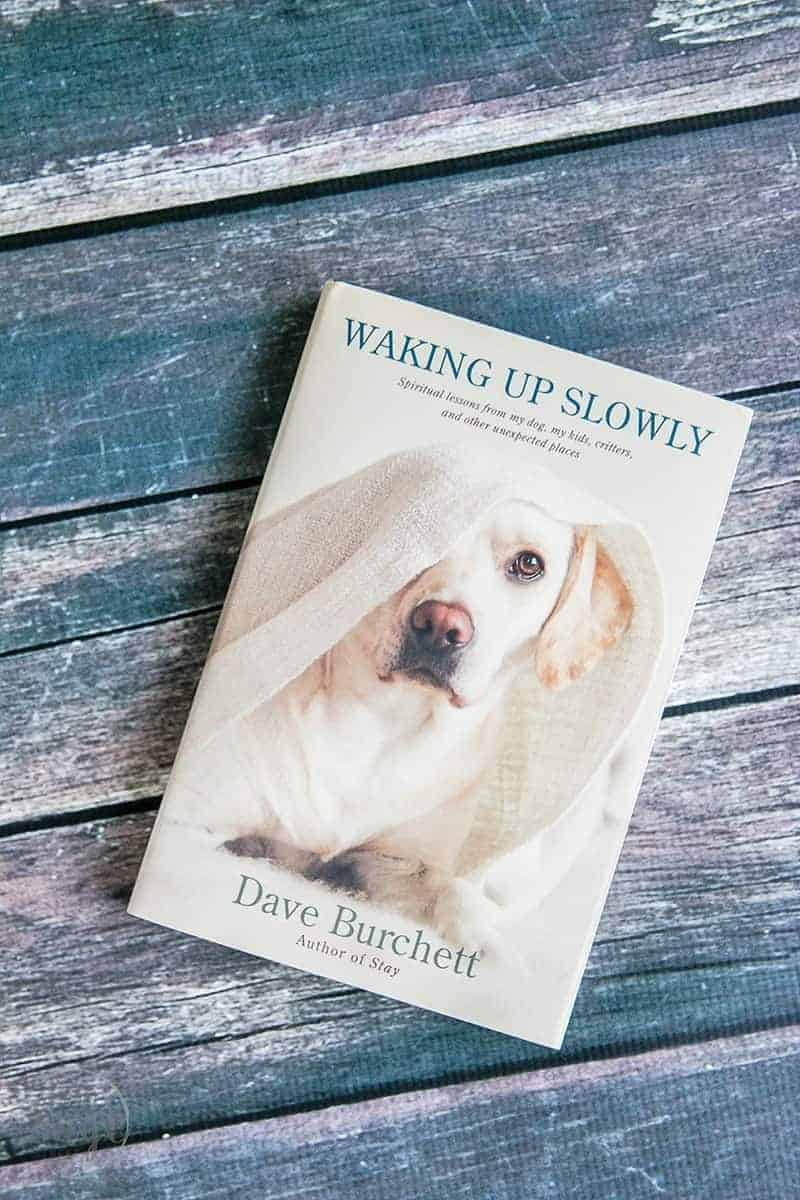The book Waking Up Slowly by Dave Burchett will help you find joy in every day so you can recognize and celebrate God's presence in the little things.