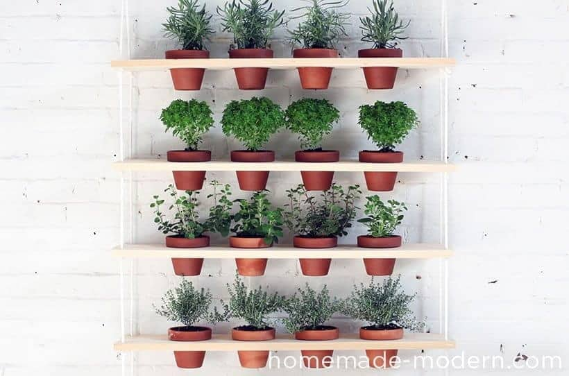 DIY projects to upgrade your balcony using plants to add vertical elements, visual interest, screening, and growing space.