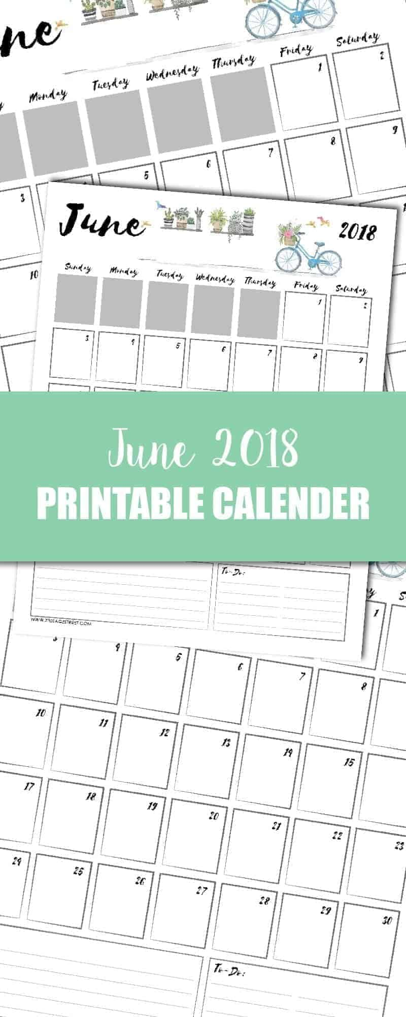 tall graphic showing a June 2018 printable calendar