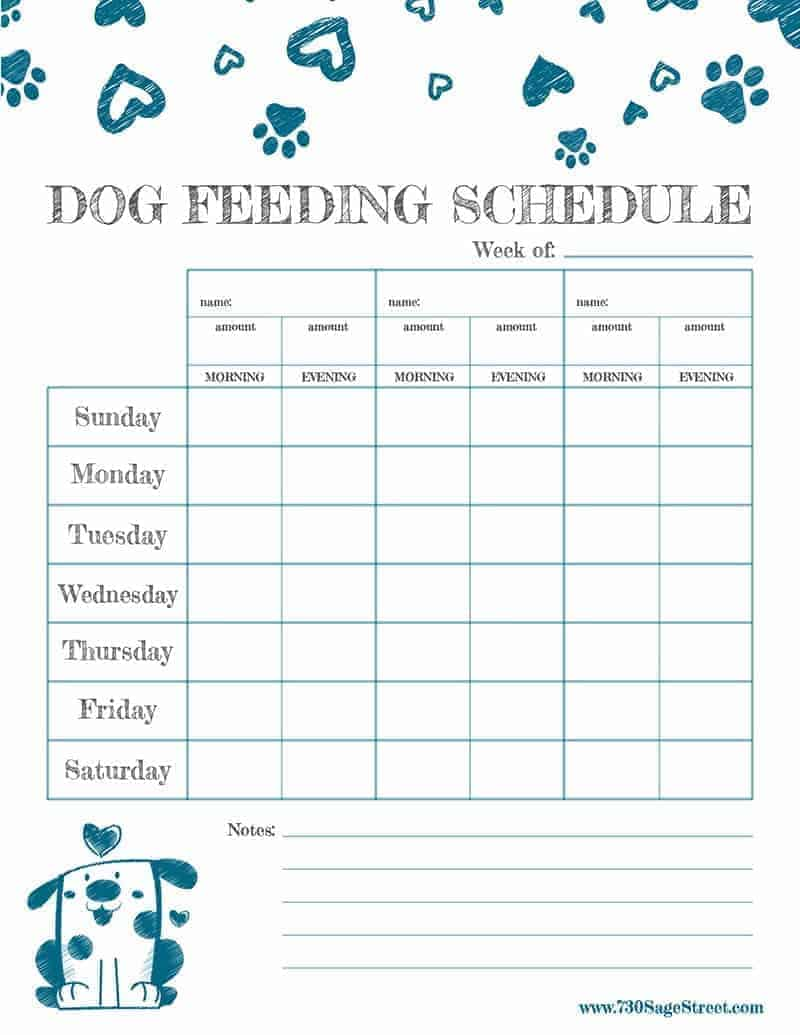 My Dog Puppy Feeding Schedule